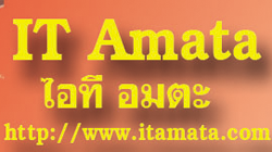 IT AMATA